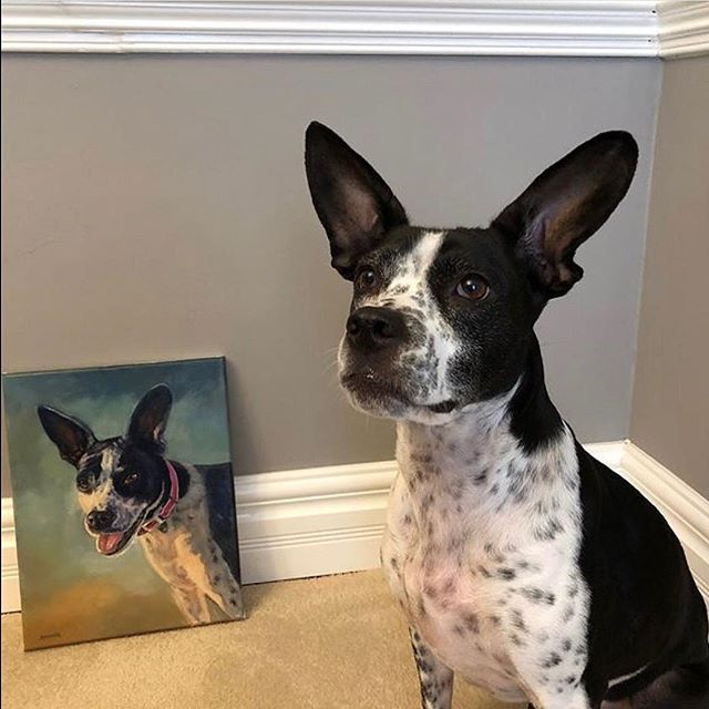Thank you so much @a0865251 for this great photo! ⠀ ⠀ ⠀ ⠀ ⠀  #petportrait #dogportrait #pupper #doggo #oilpainting #art #drawing #picture #artist #sketch #artsy #instaart #beautiful #instagood #gallery #creative #instaartist #graphics #artoftheday #picoftheday #arrtpassion ⠀