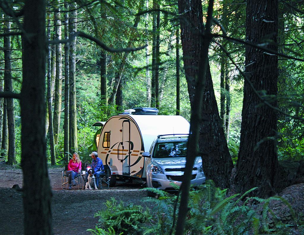 Travel Trailer in Woods Web.jpg