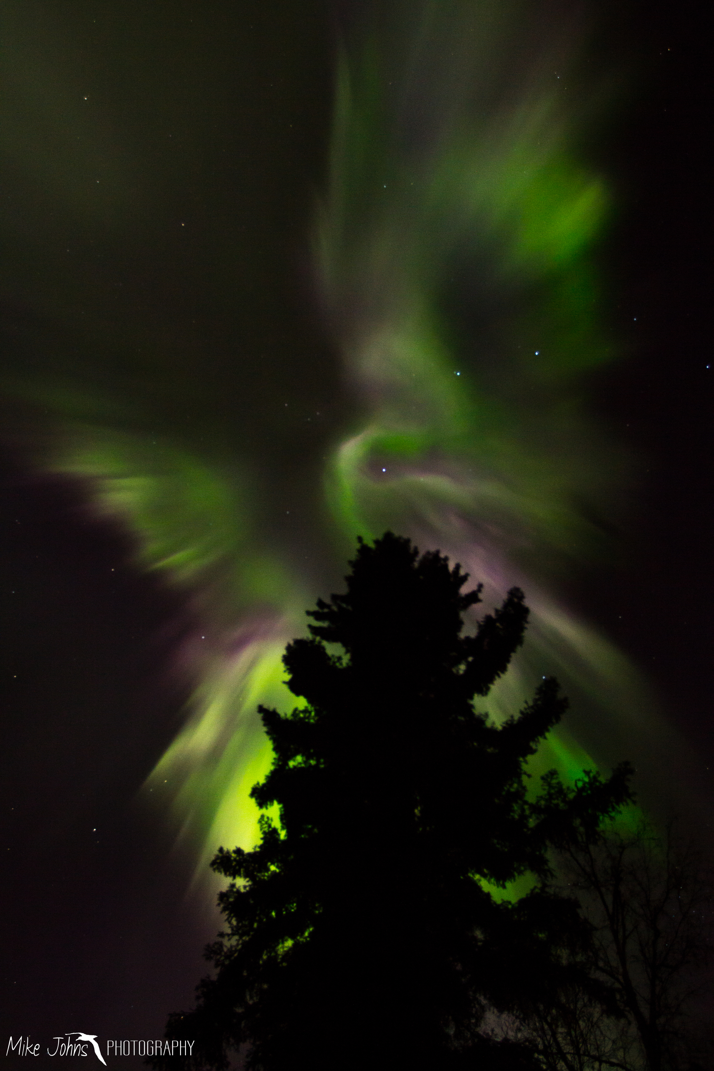 Aurora With Wings