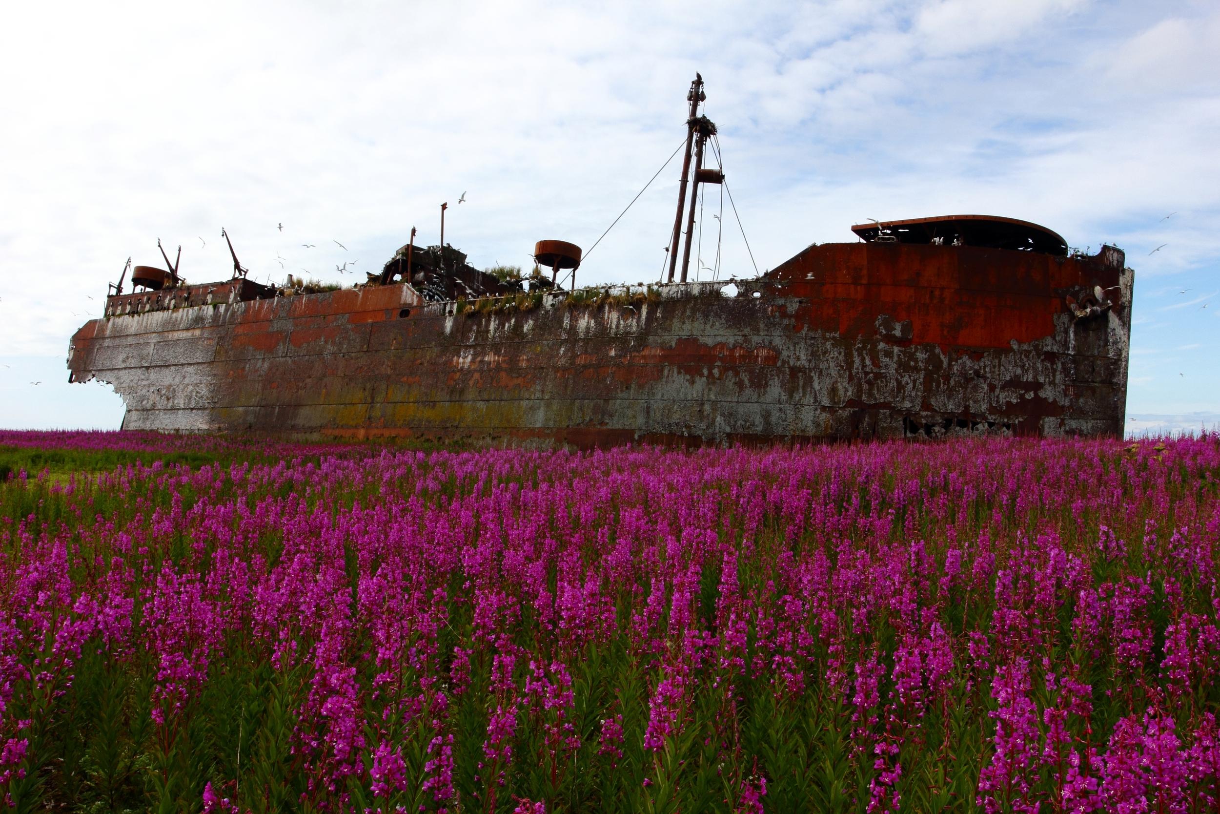 Middleton Island Wreck