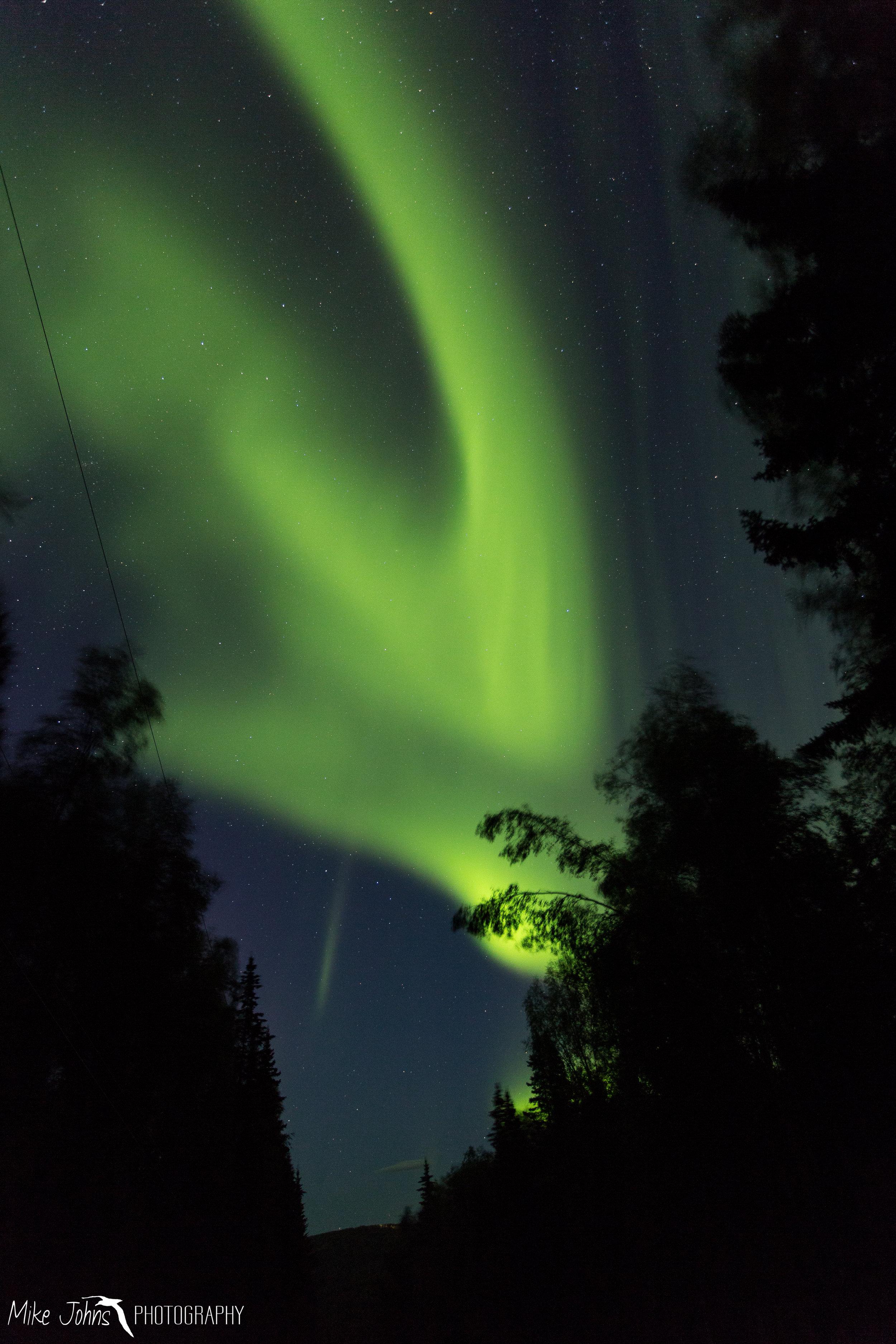 Fall Aurora