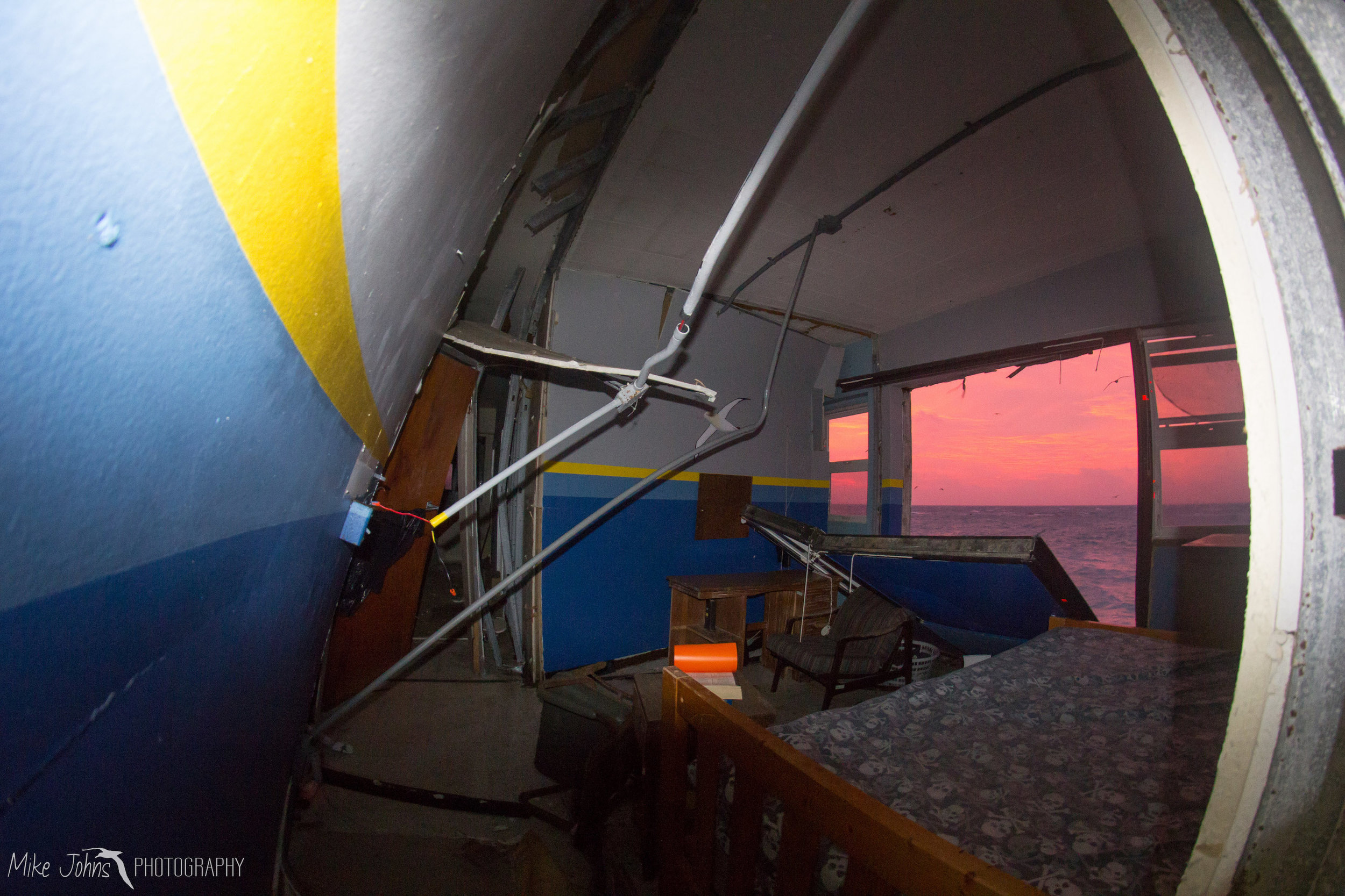 tern2012-0456.jpg