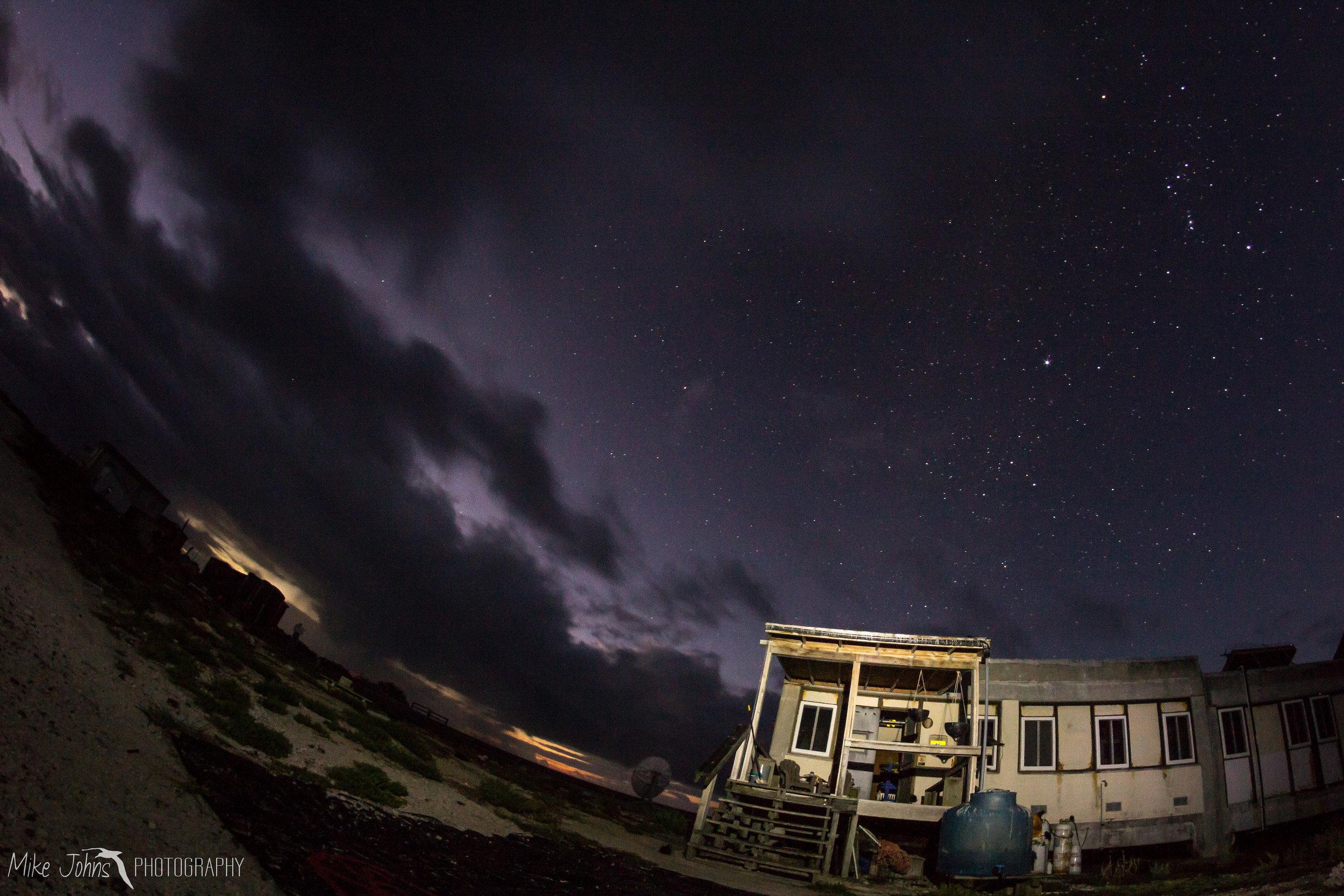 tern2012-7565.jpg