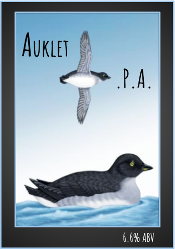 auklet.png