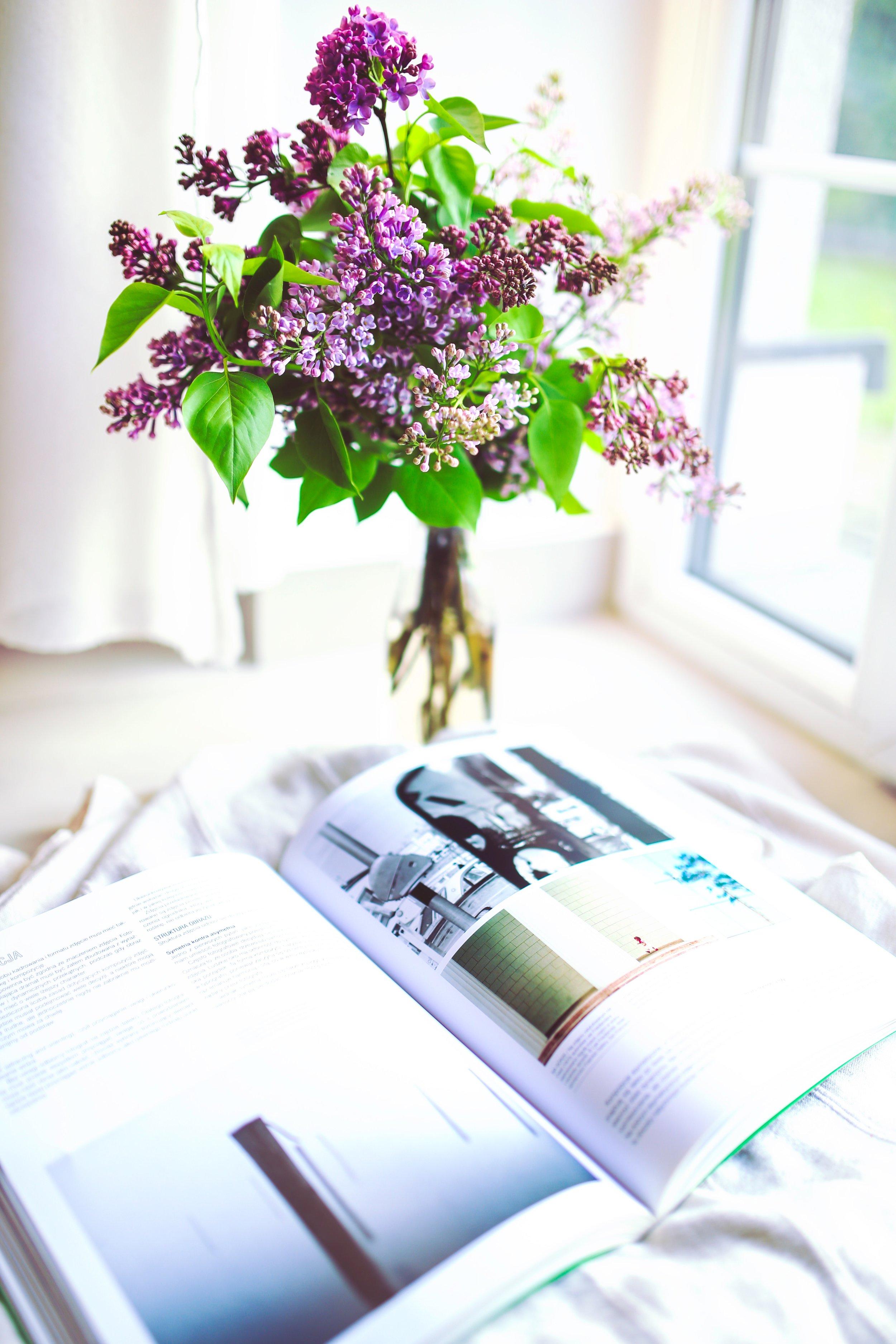 blur-book-business-5773.jpg