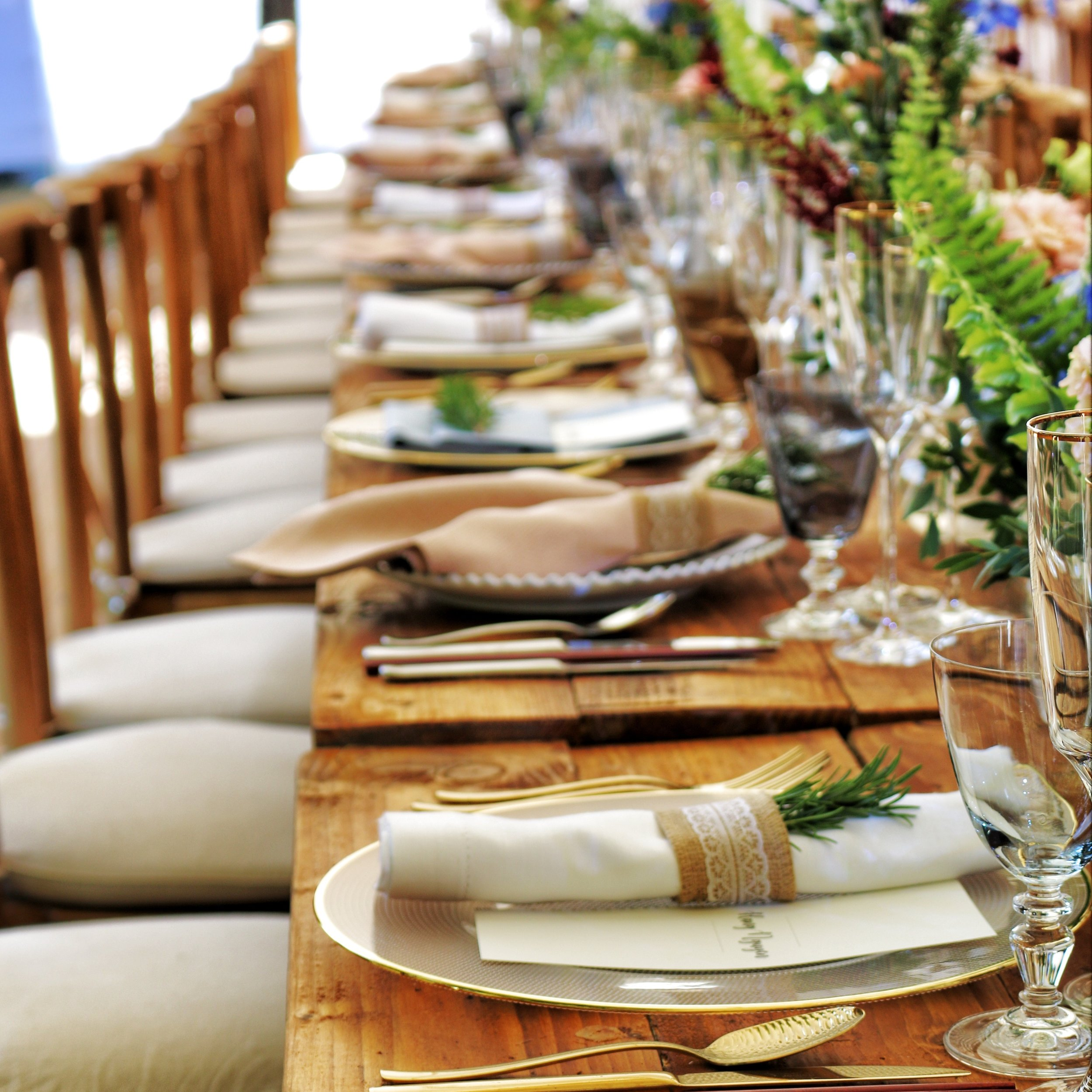 banquet-catering-chairs-1395967.jpg