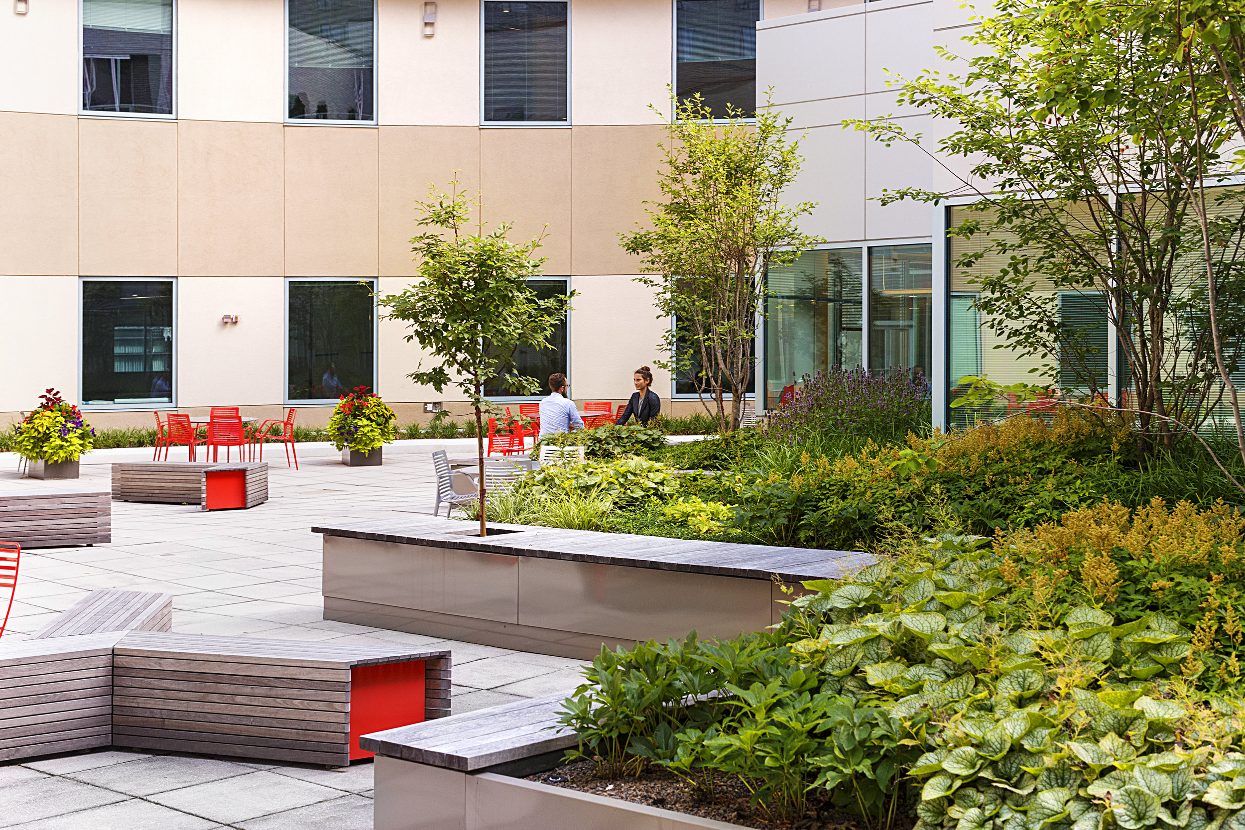 Recover-Green-Roofs-0029.jpg