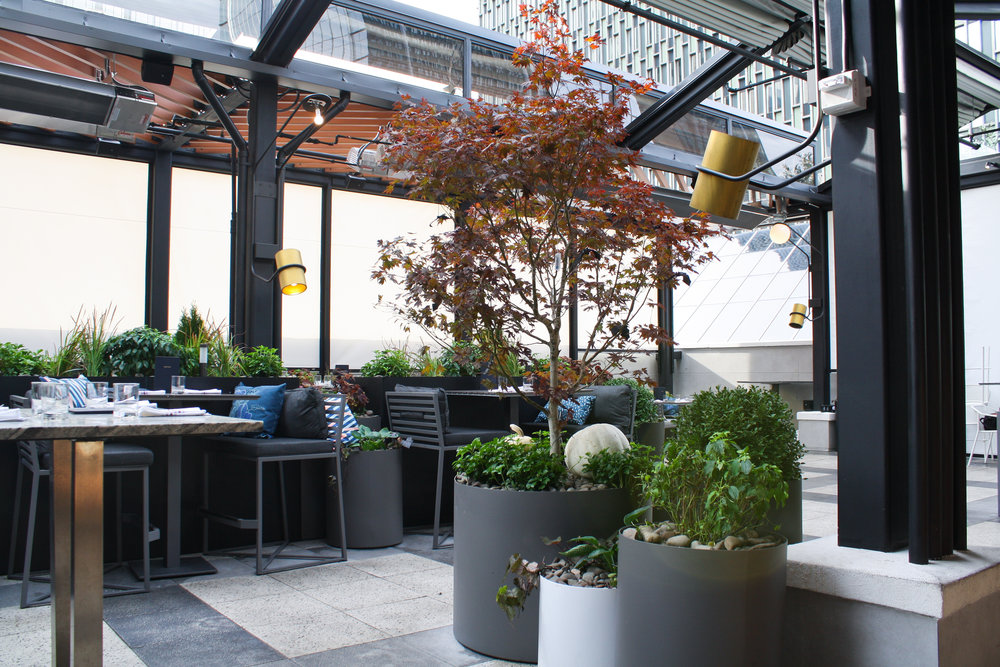 Earls Prudential Rooftop Patio Recover Green Roofs