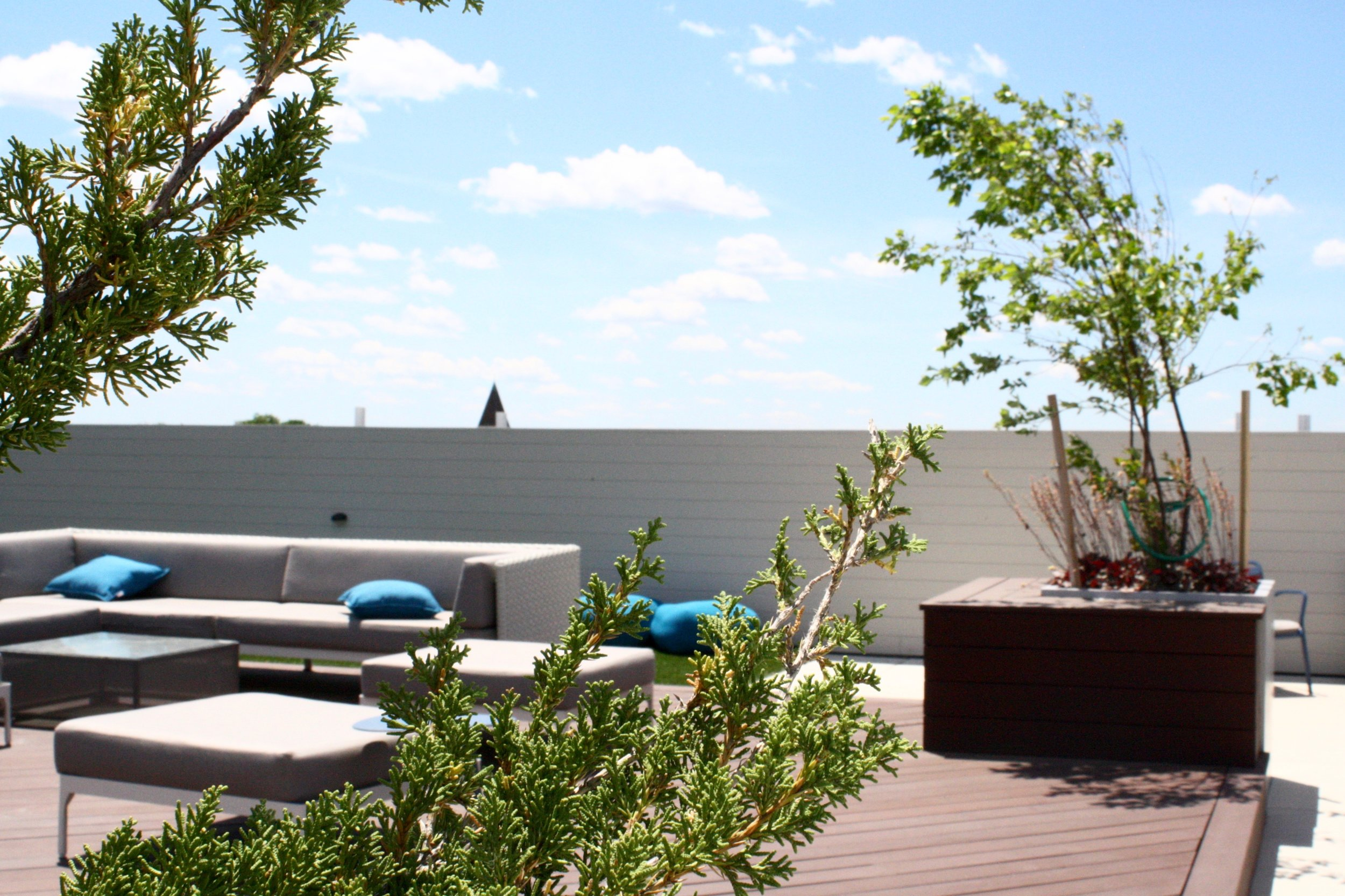 recover-green-roofs-rooftop-patio-east-boston-2015-29.jpg