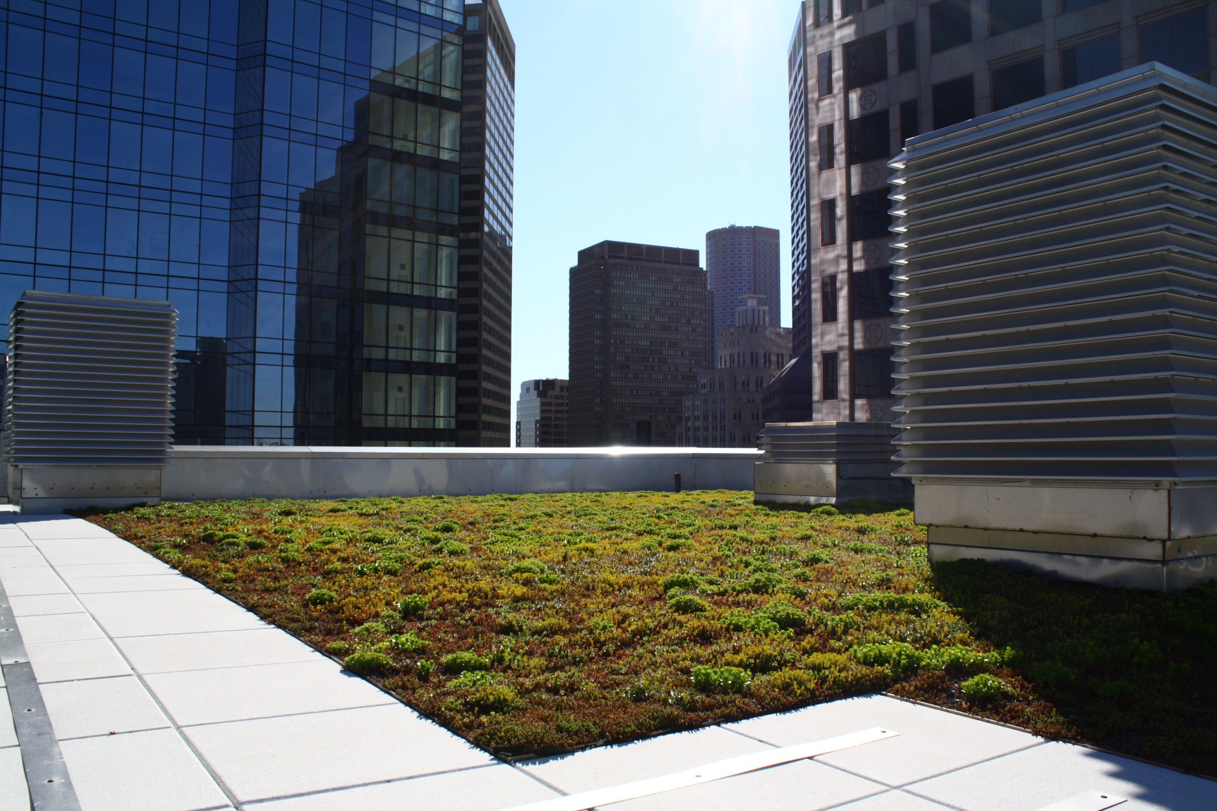 recover-green-roofs-rooftop-garden-downtown-crossing-2016-13.jpg