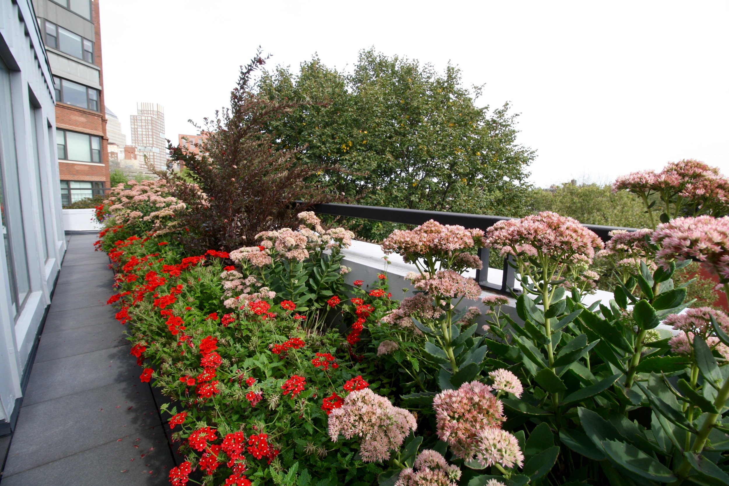 recover-green-roofs-rooftop-patio-boston-2016-11.jpg