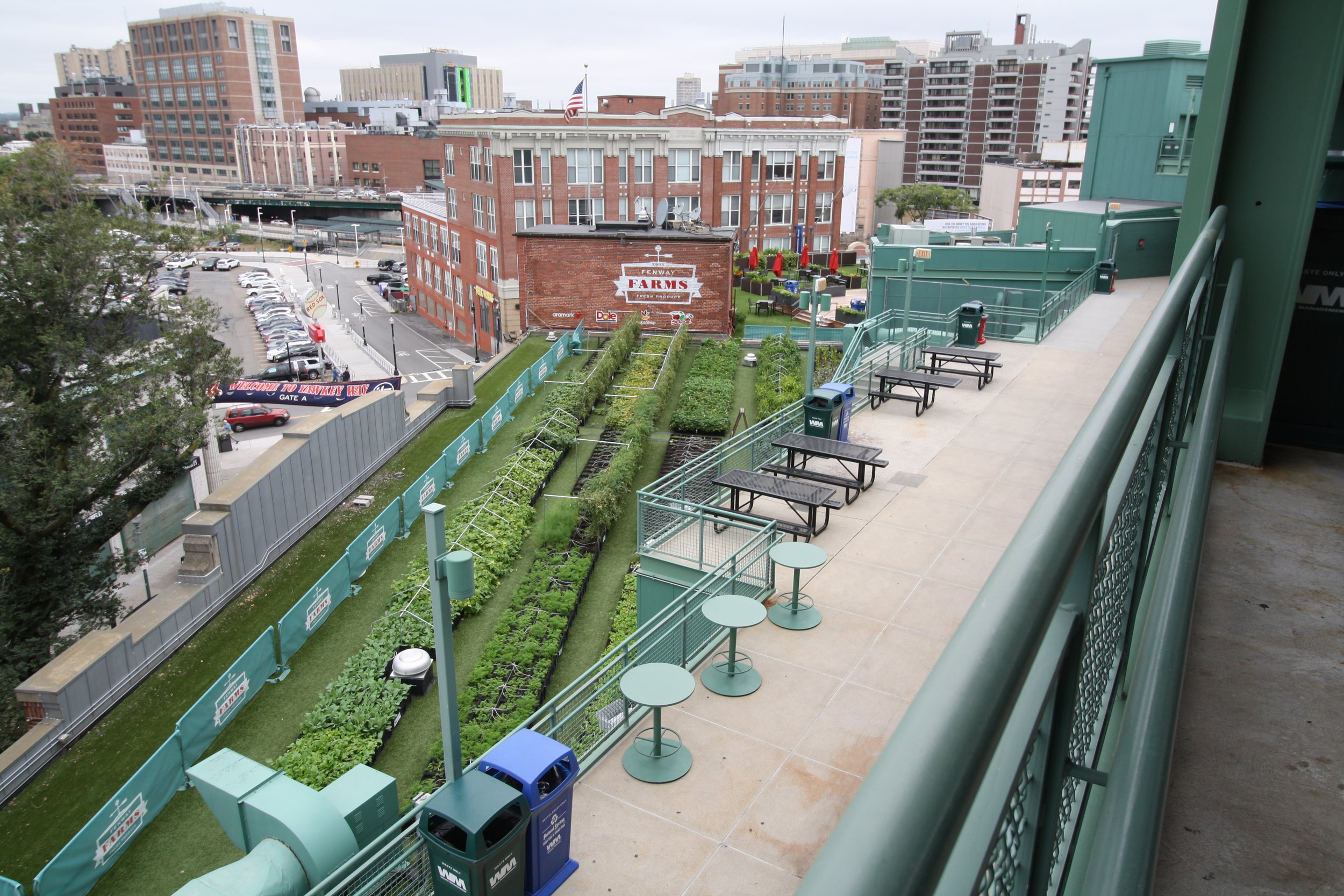 recover-green-roofs-fenway-farms-oct-2016-15.JPG