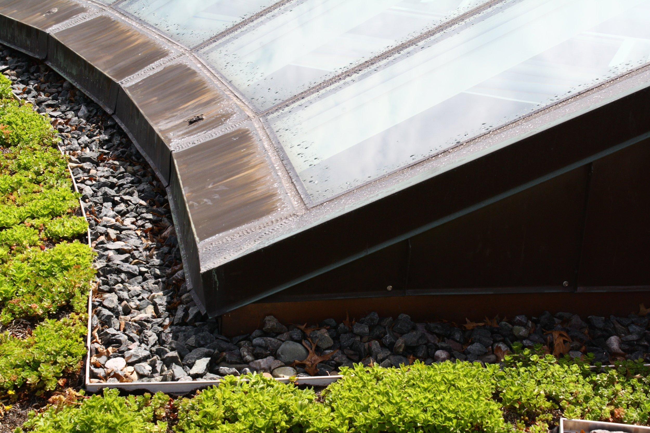 recover-green-roofs-harvard-business-school-garden-2016-5.jpg
