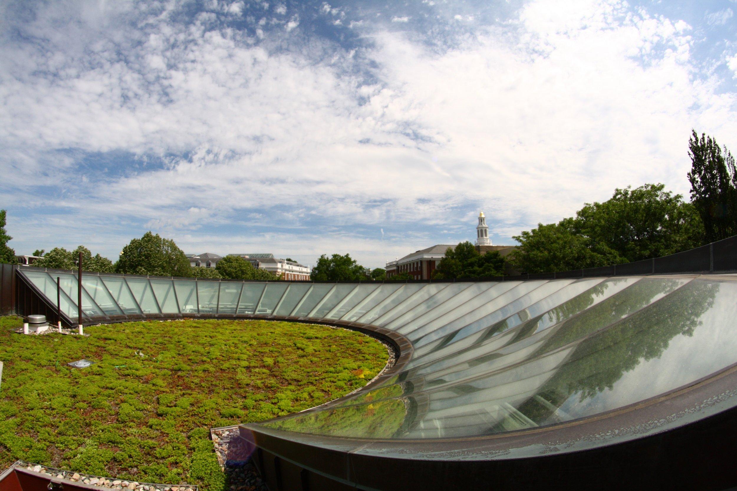 recover-green-roofs-harvard-business-school-garden-2016-8.jpg