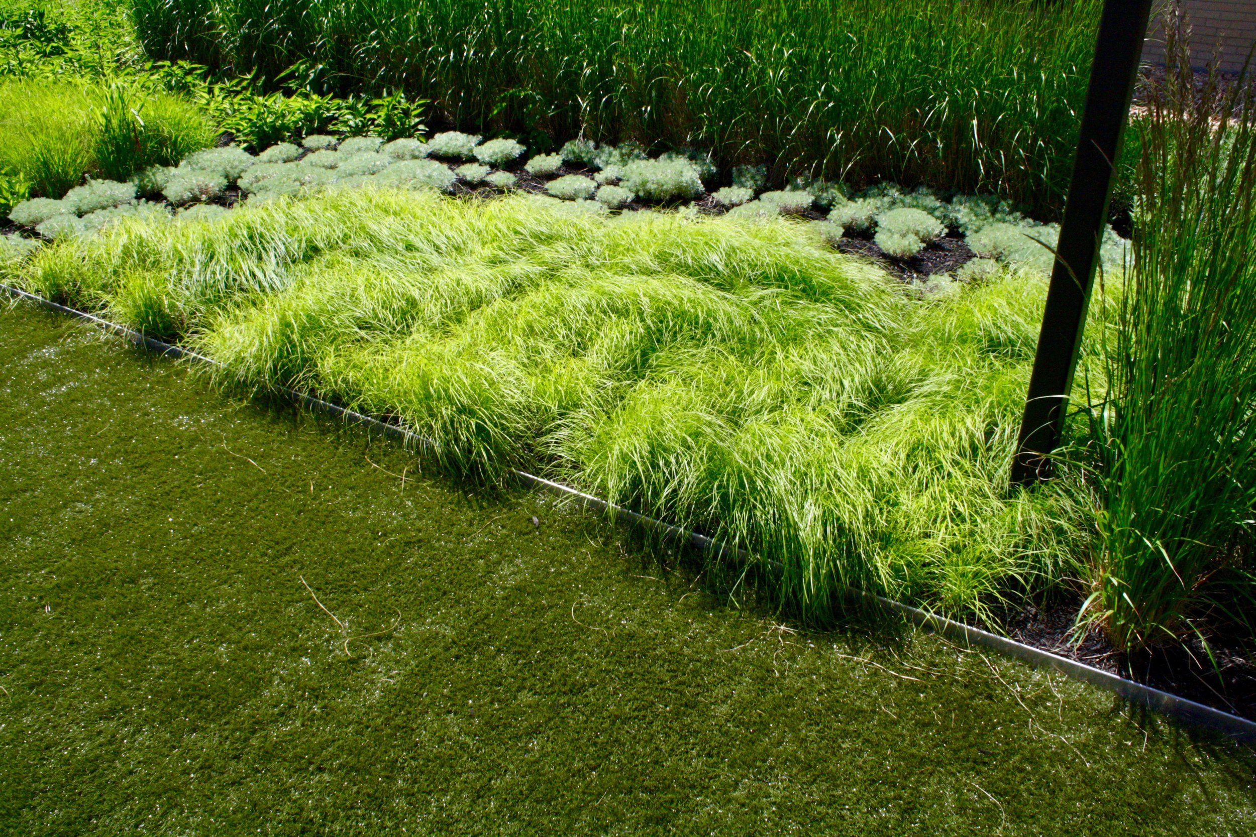 recover-green-roofs-ink-block-roof-lounge-2014-8.jpg