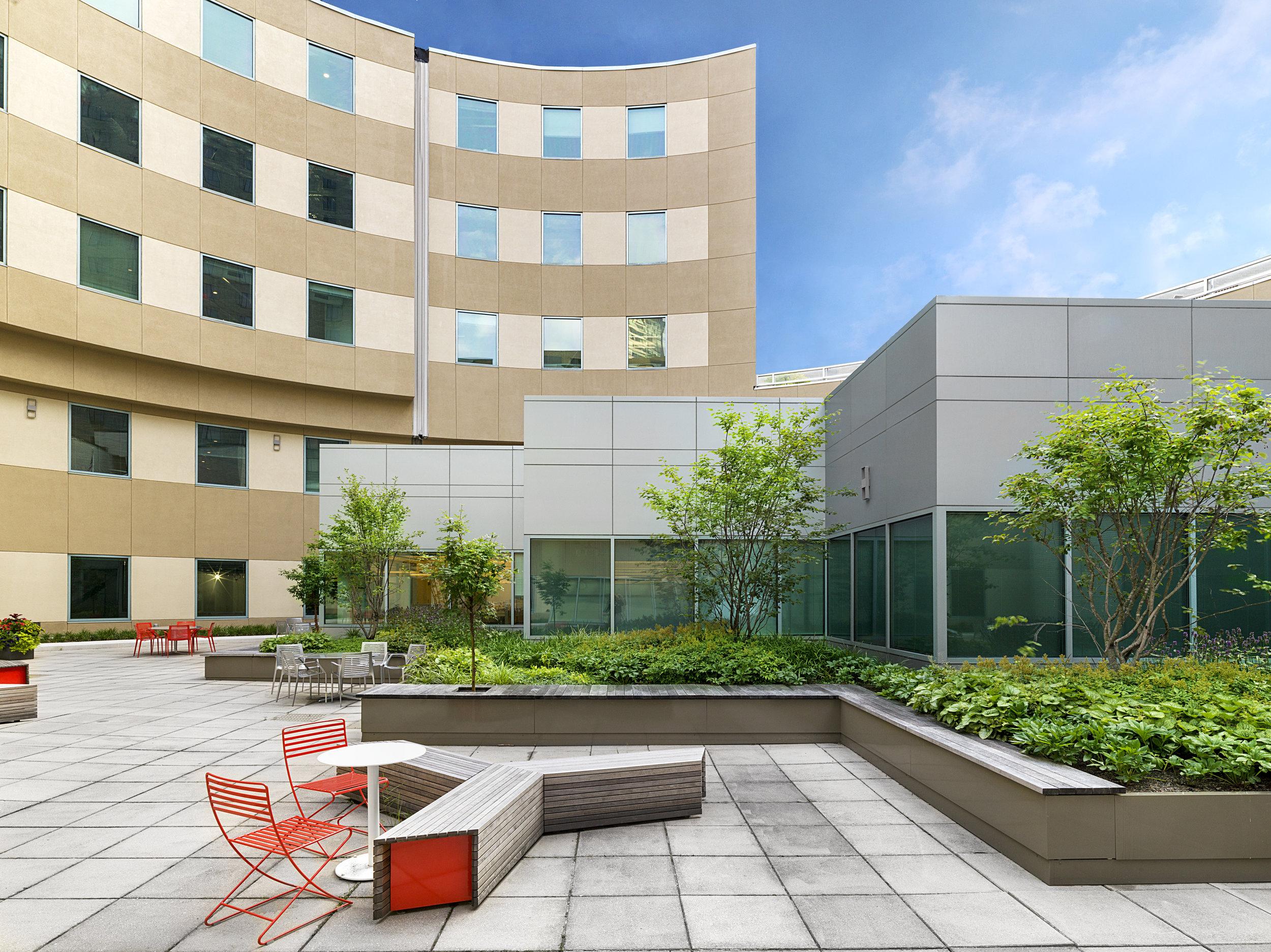 recover-patrick-rogers-photography-intensive-rooftop-garden-2017-3.jpg