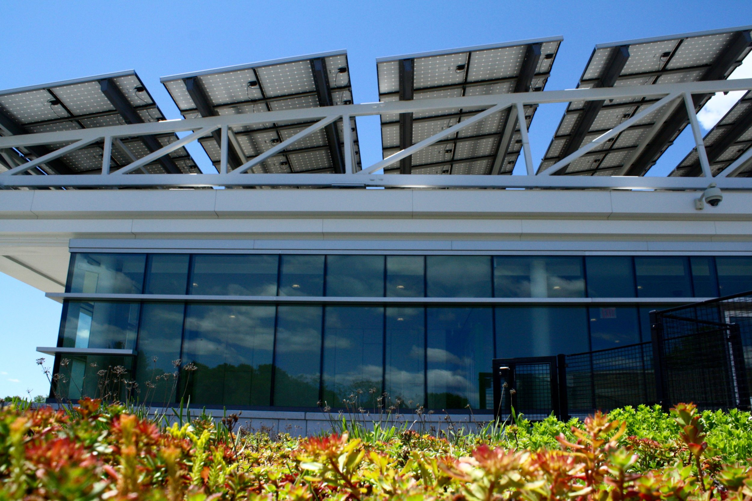 recover-green-roofs-north-shore-cc-2014-3.jpg
