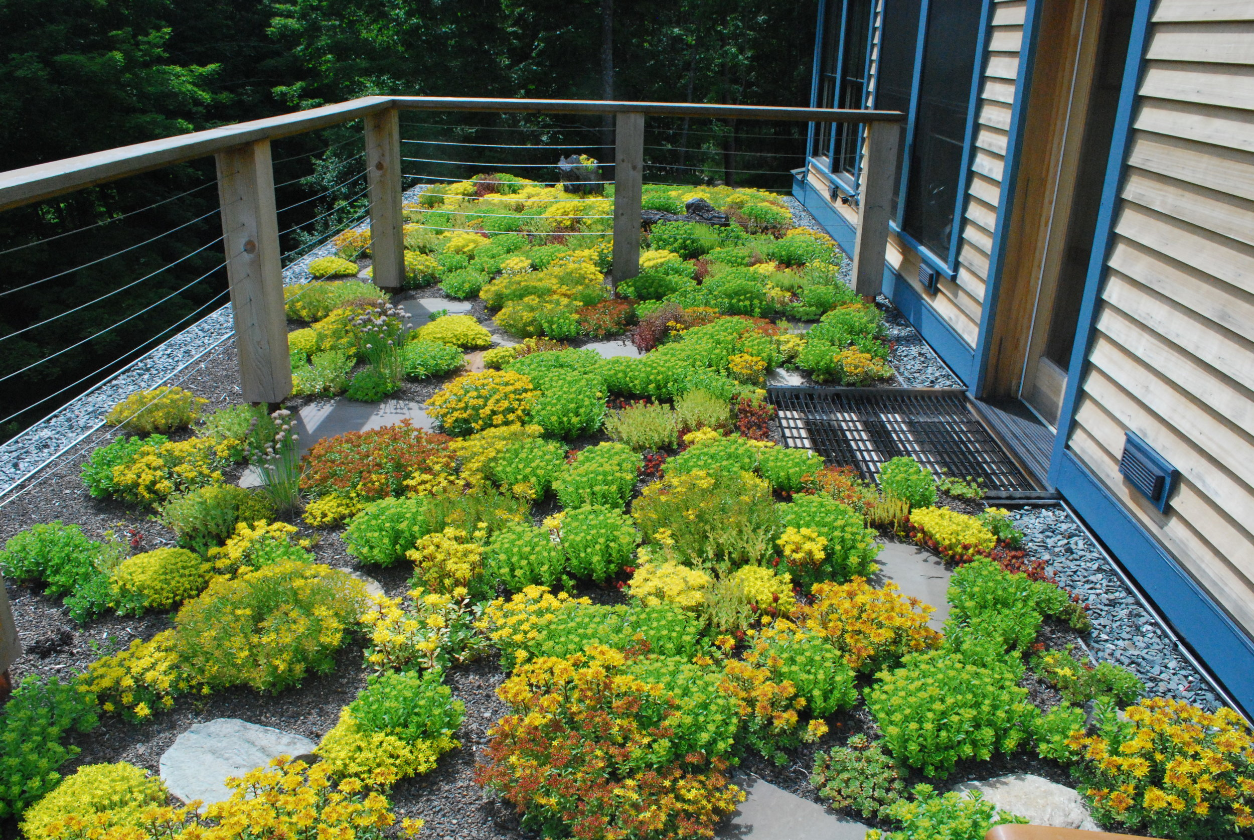 recover-green-roofs-master-balcony-vermont-2014-2.JPG