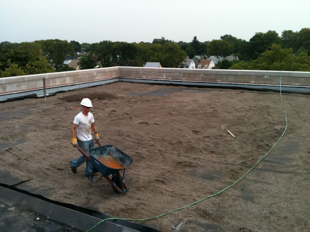 recover-green-roofs-public-school-roof-NYC-2010-1.jpeg