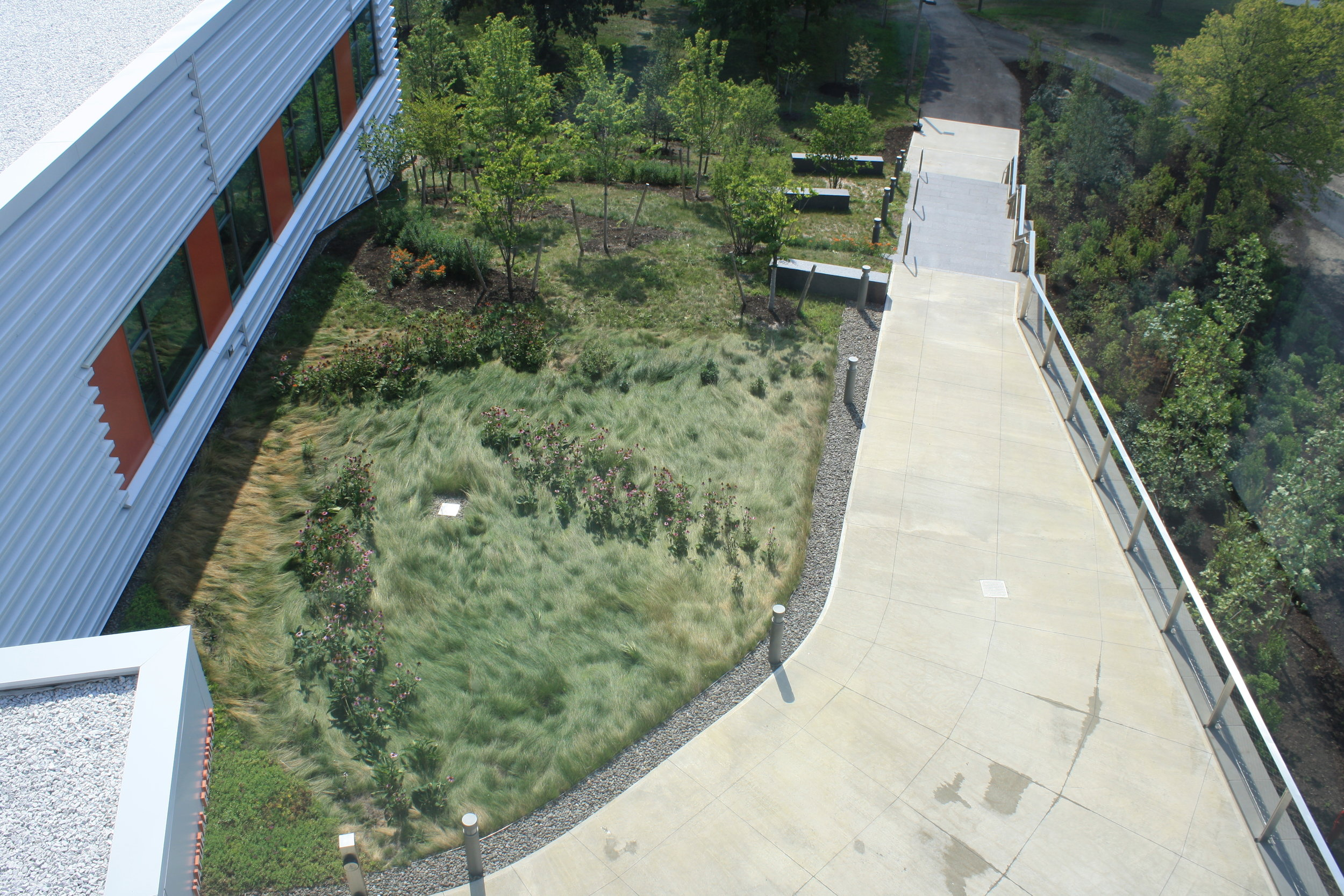 recover-green-roofs-SUNY-cobleskill-2014-26.jpg