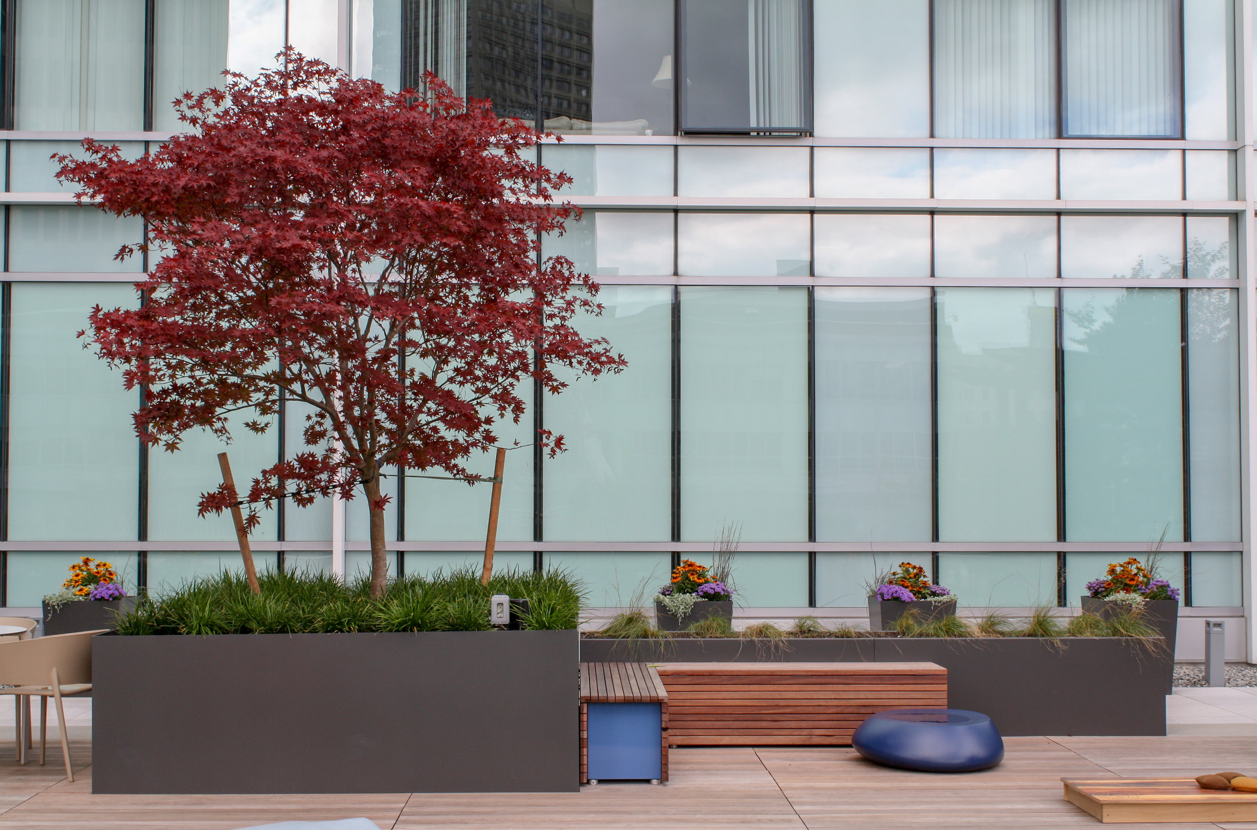 recover-green-roofs-plaza-watermark-24.jpg