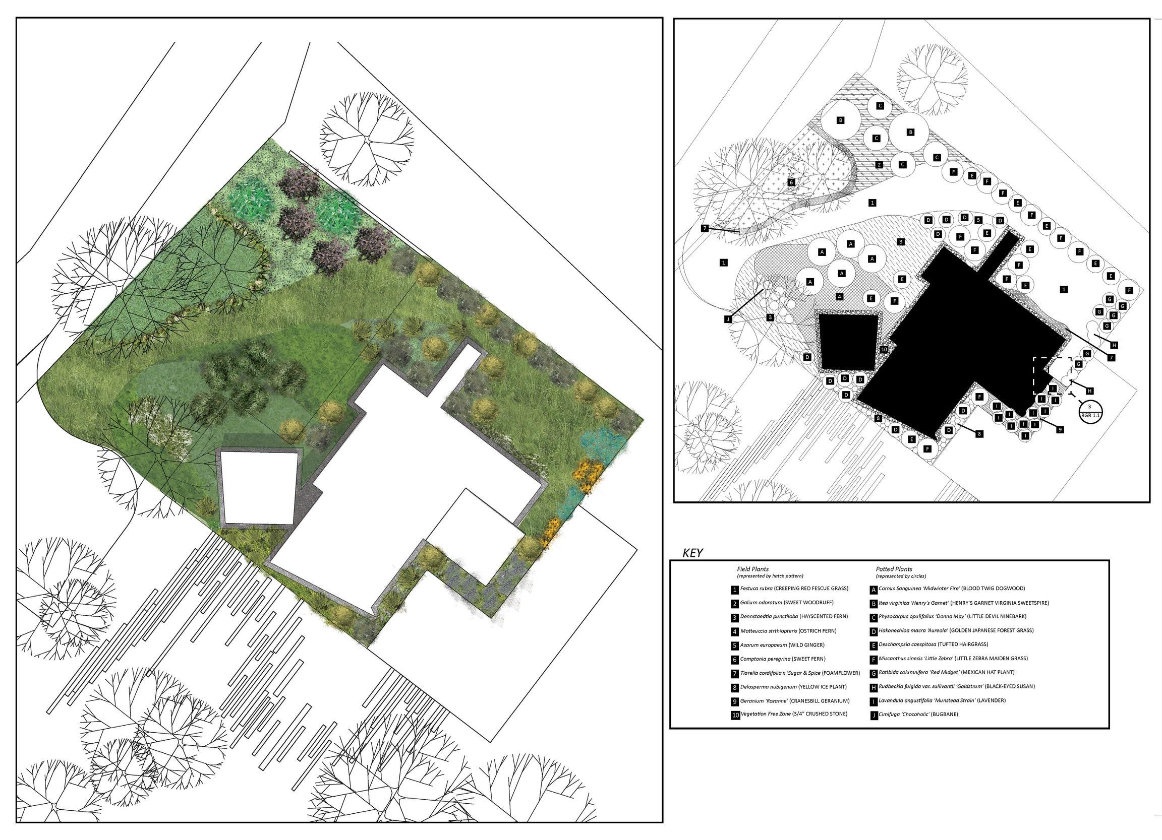 Lake+Dr+Planting+Plan_r2+2015-05-06_Page_1.jpg