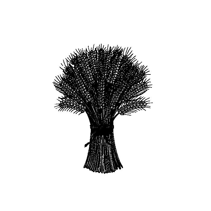 The Wheatsheaf - Tooting