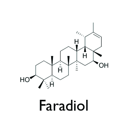 Faradiol.jpg