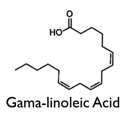 Gama-linoleic Acid.jpg