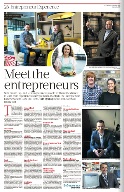 Sunday Business Post ROI March 2017