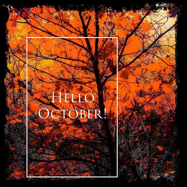 Hello October!! Great to see you again!! #october #socal #fall