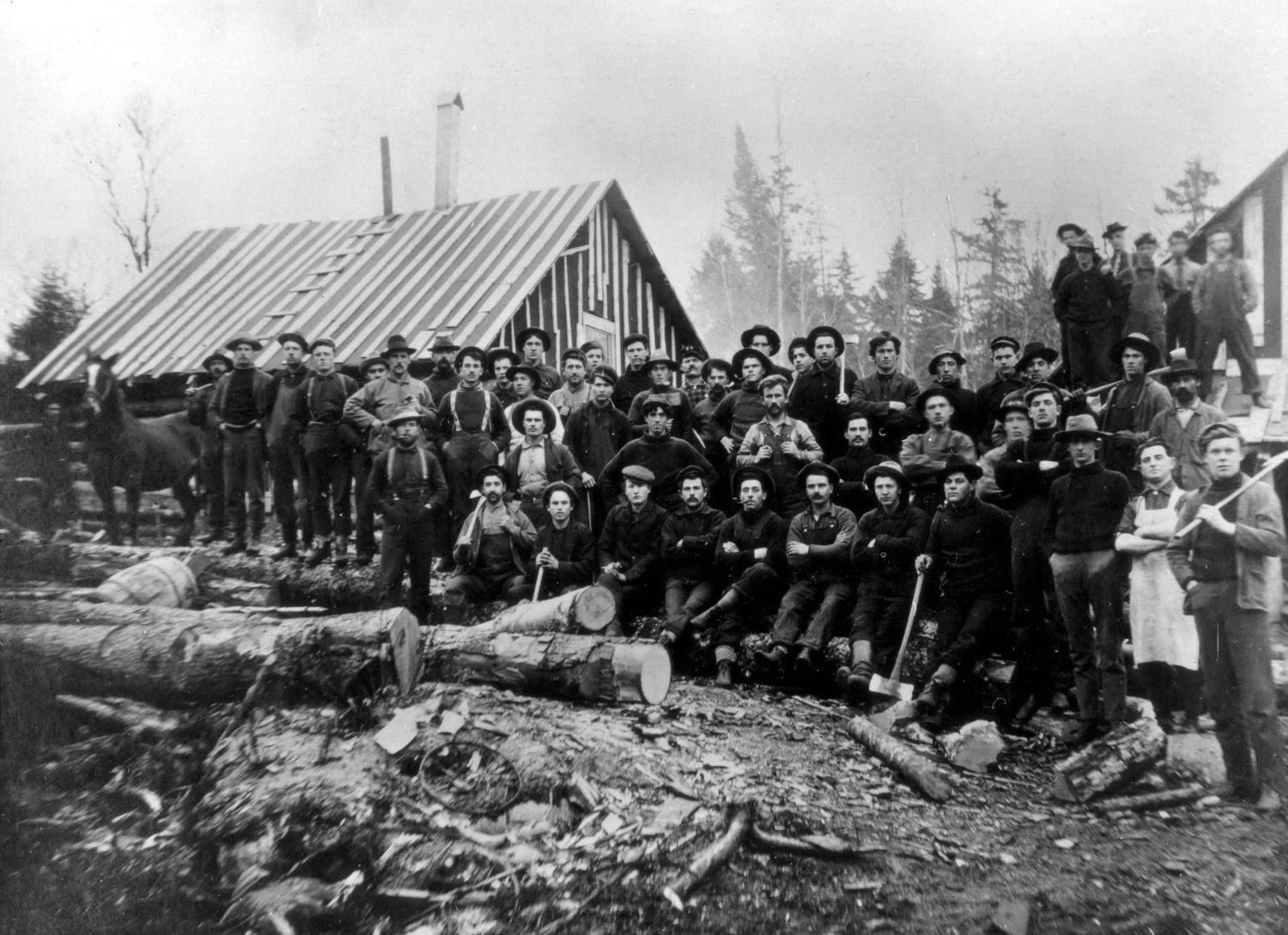 LS08691_000-Logging Camp.jpg