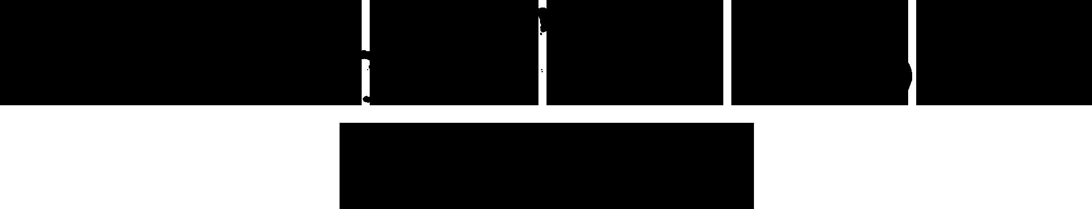 vfhr-logo.png