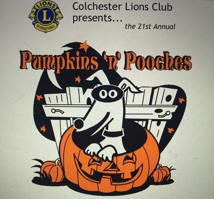 pumpkinsnpooches.jpg