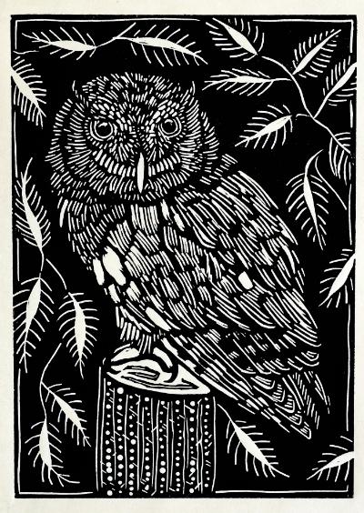 "Eastern Screech Owl  2015, linoleum print on rice paper. 7"" x 5"""
