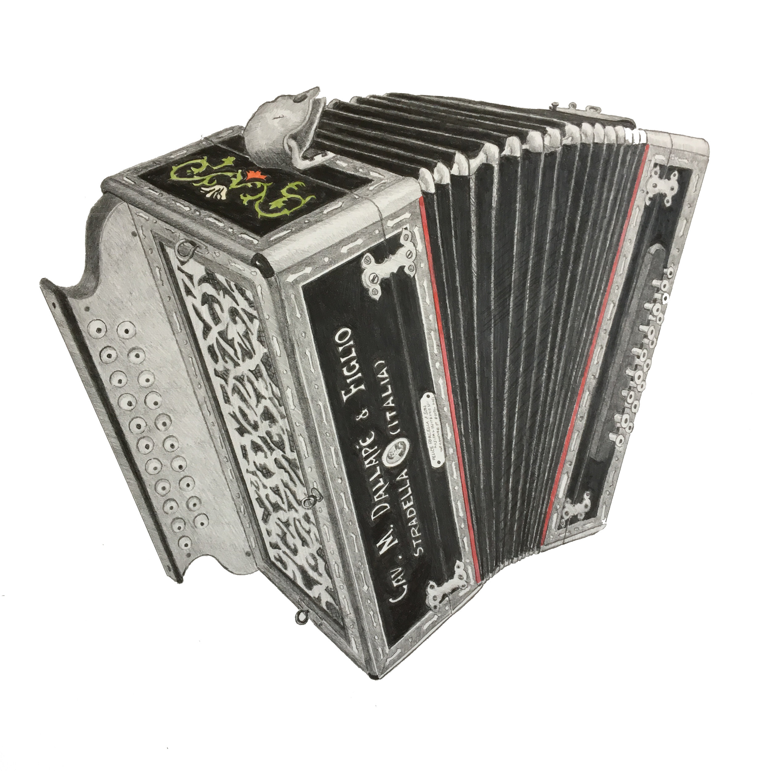 opened accordion.jpg