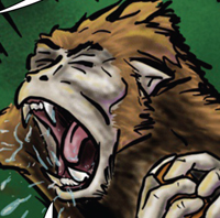 Monkeys with Drug Problems -