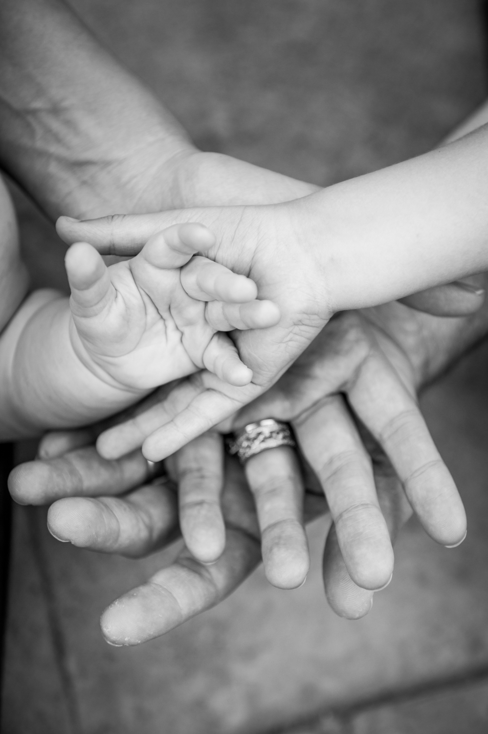 hands family photo session black and white