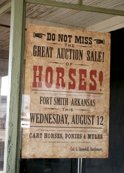 horses poster in window.jpg