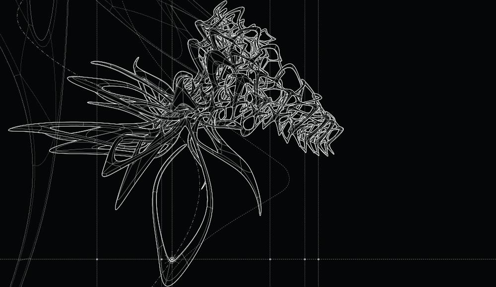 insectus_09.jpg
