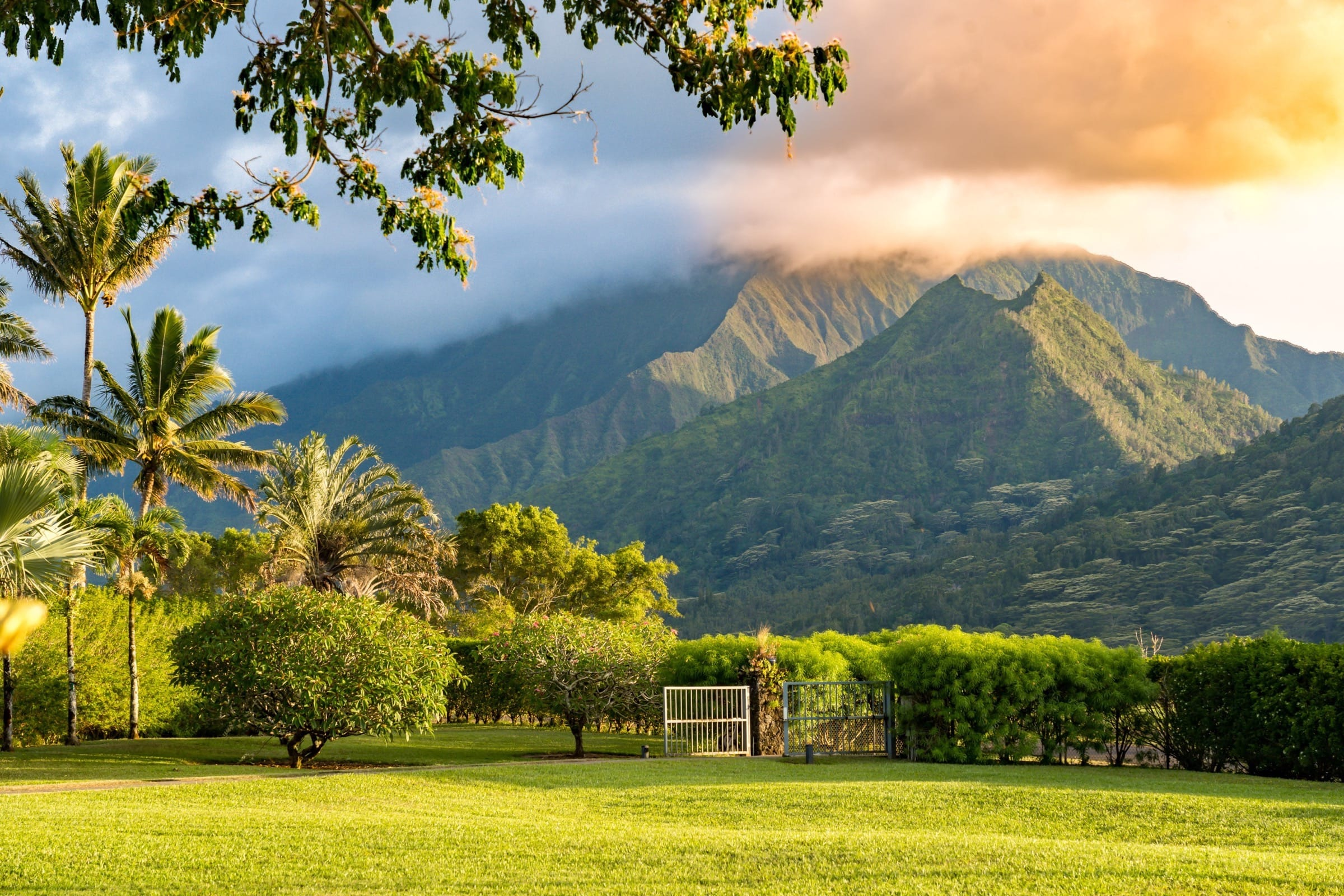 Gated Entry with View of Hihimanu Mountain