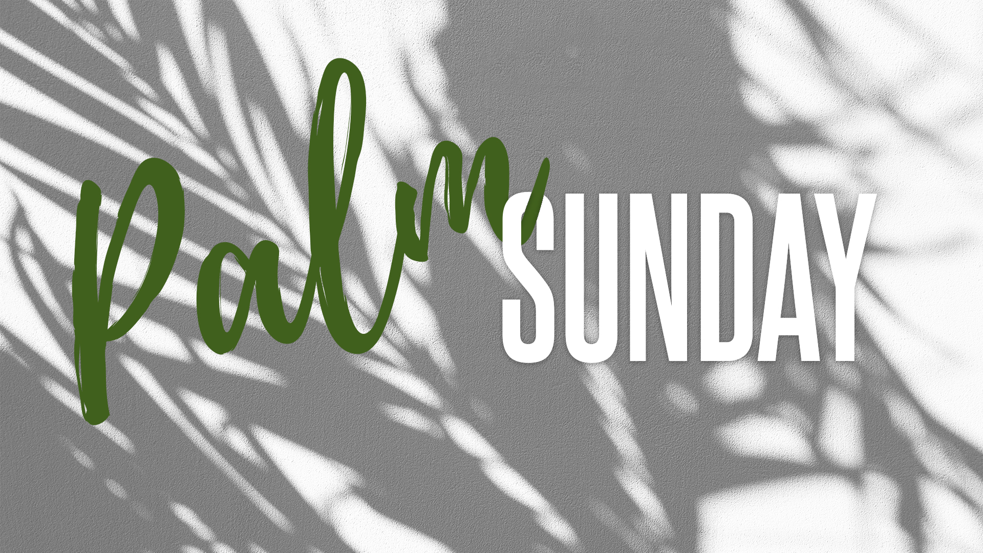 Palm Sunday Graphic Main Slide.jpg