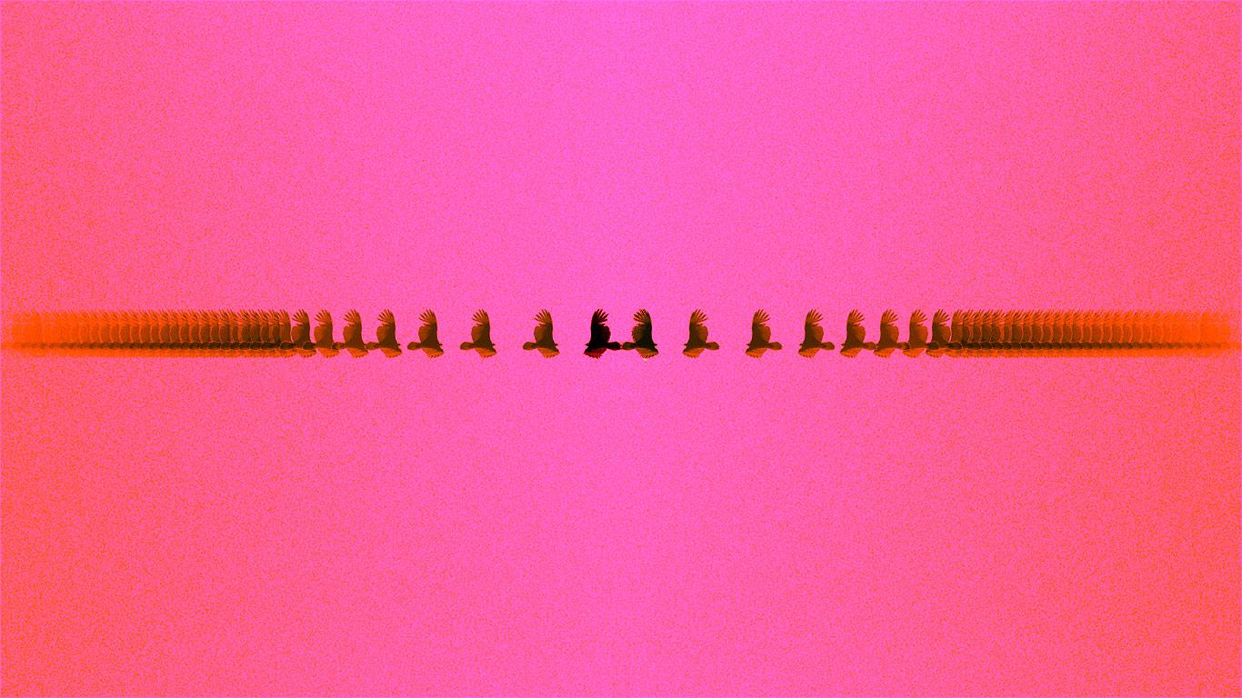 trippybirdmirrorbubblegumcolor.jpg