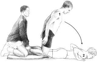 Figure 2: Adapted from the Petersen study. Depicted above is the partner-assisted eccentric hamstring exercise (i.e. Nordic Drops).