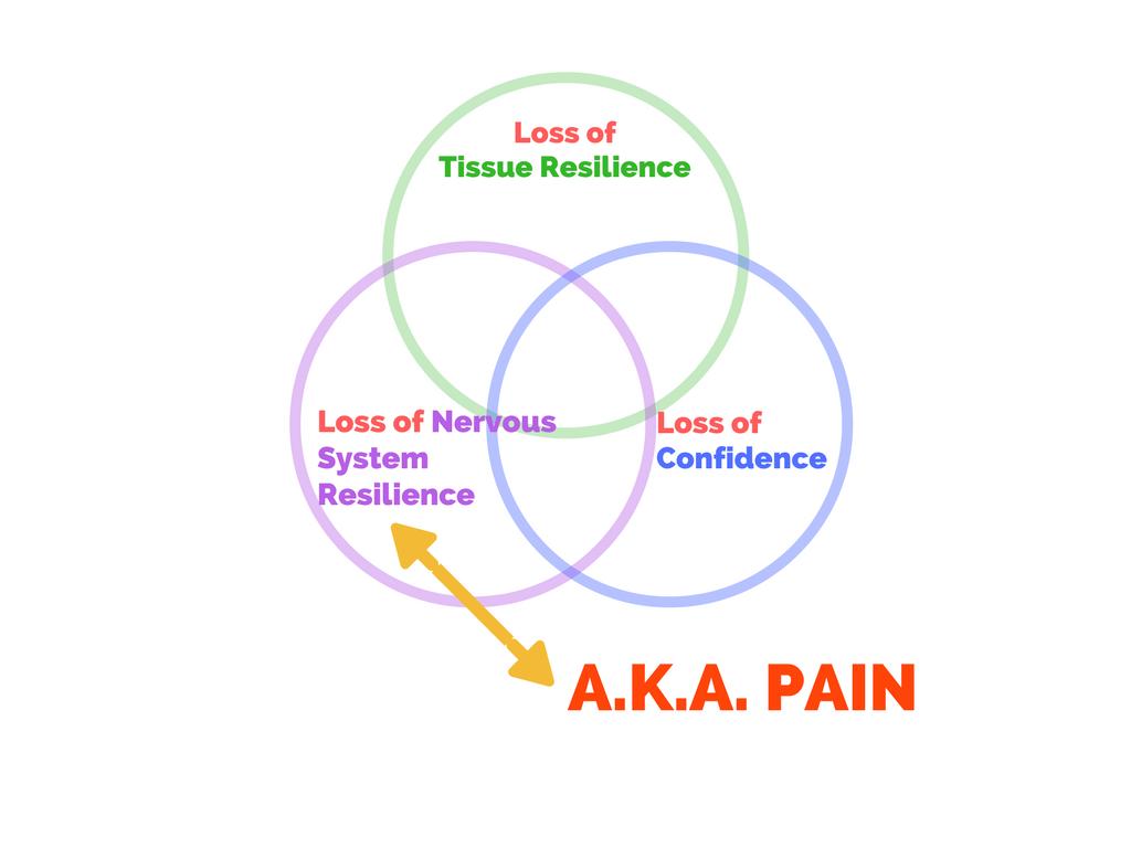 "Figure 4. Conceptualizing ""injury"""