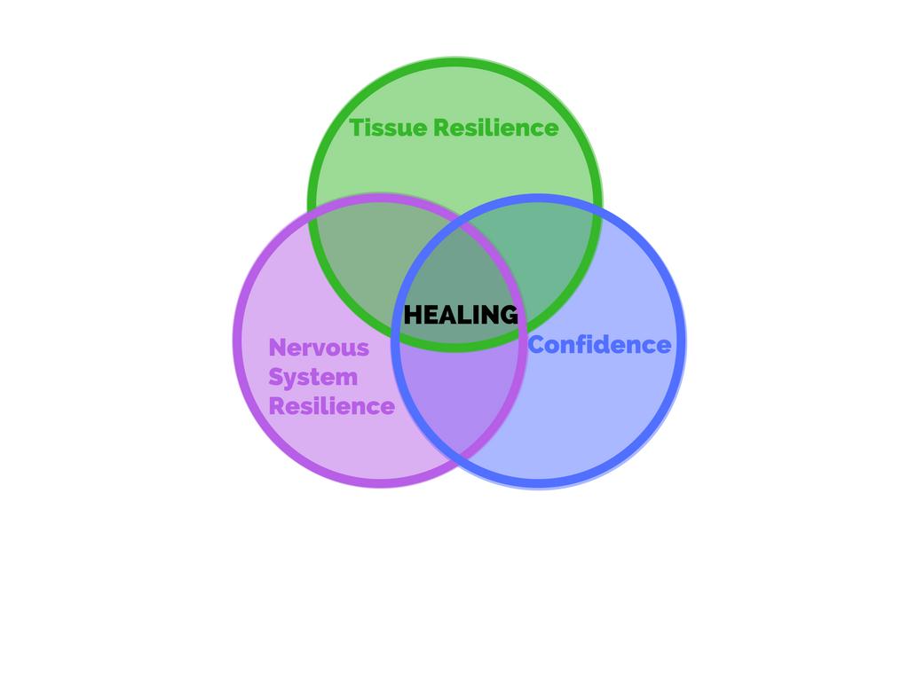 """Figure 5. Conceptualization of """"healing"""""""