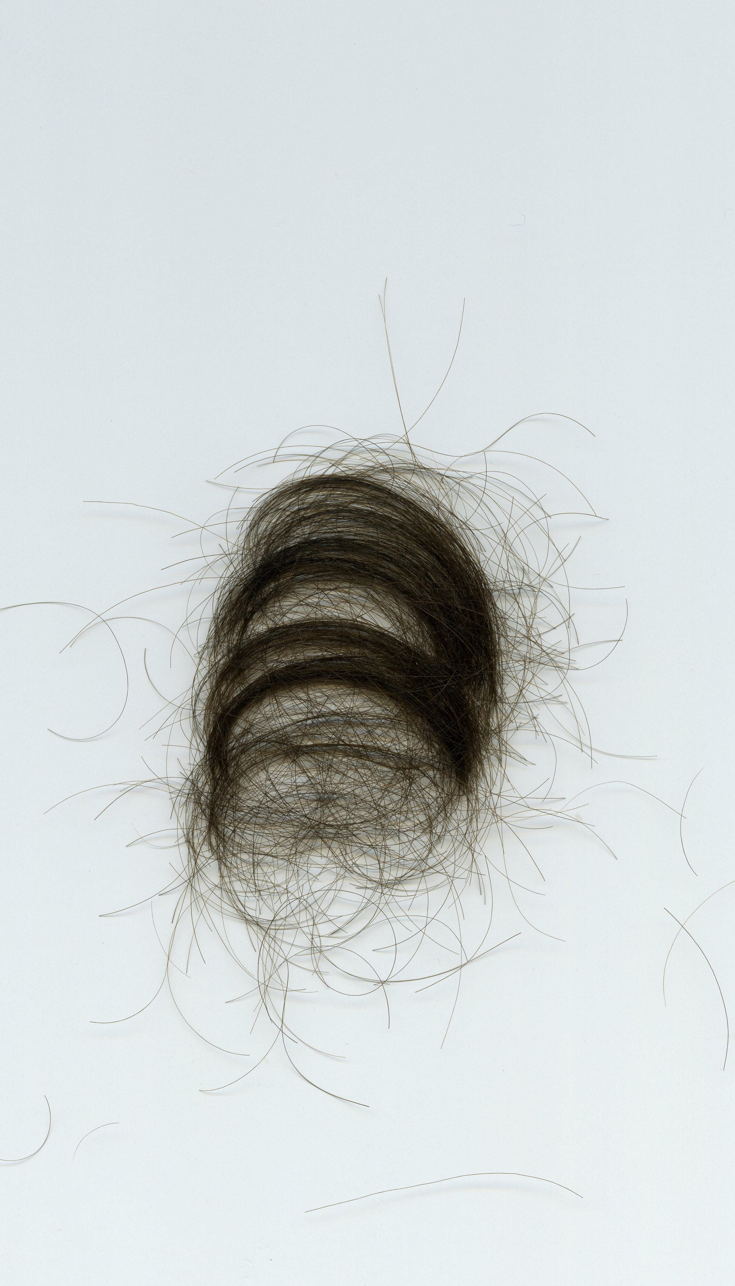 Study (Hair Scan)