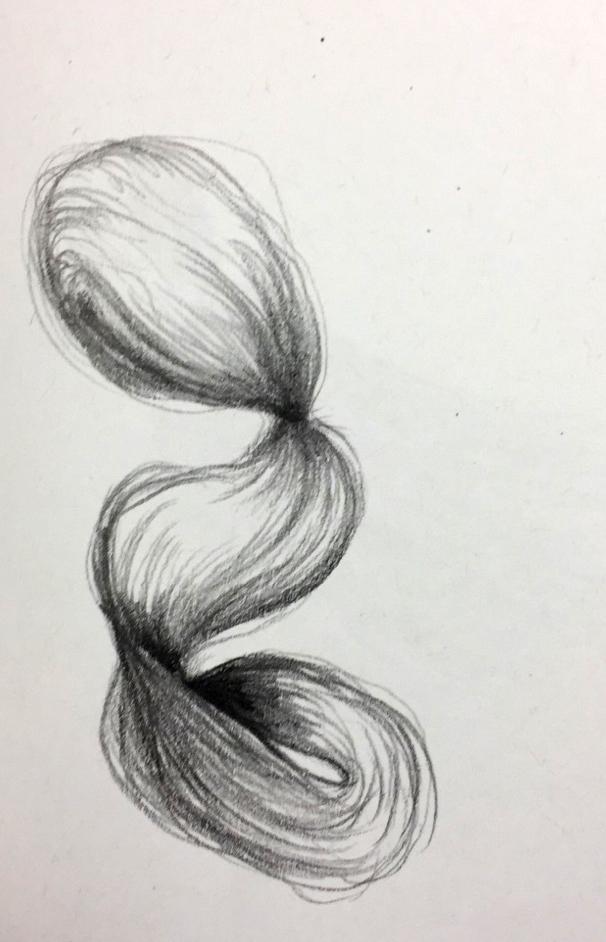 Hair Study