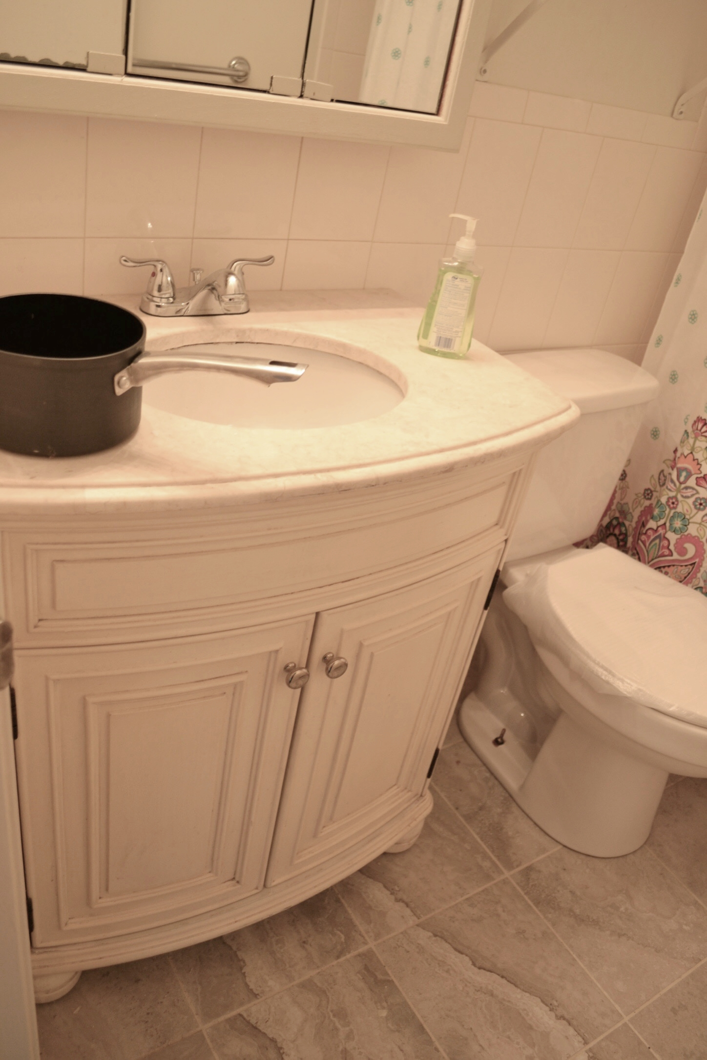 Condo Before-Bathroom (why is there a pot???)