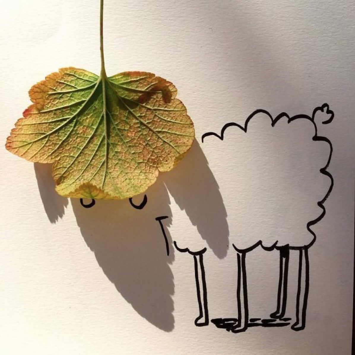 Vincent Bal creates these whimsical doodles by using long shadows of everyday objects #illustrator